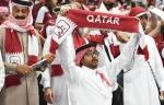 25.01.15 Österreich - Qatar